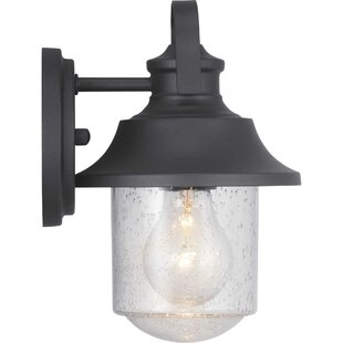 Breakwater Bay Sisson Outdoor Sconce