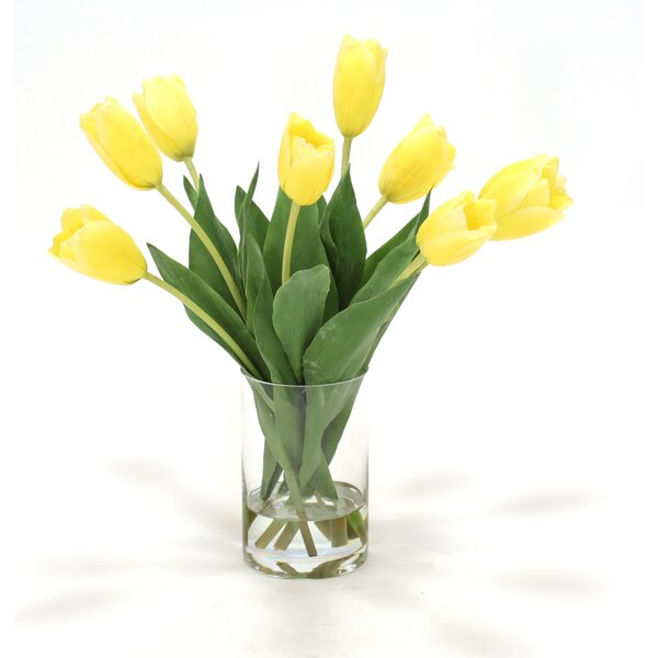 Distinctive Designs Waterlook Dutch Tulips In Glass Cylinder Vase