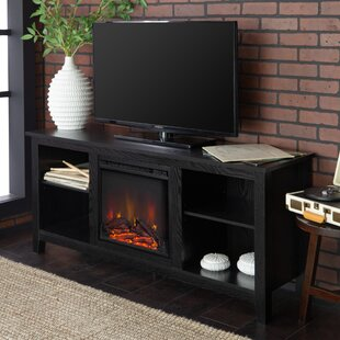 Sunbury TV Stand for TVs up to 60 with Electric Fireplace by Beachcrest Home