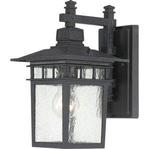 Lizbeth 1-Light Outdoor Wall Lantern