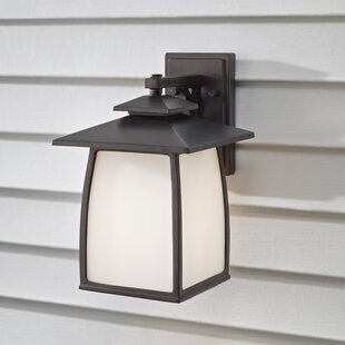 Darby Home Co Bridgwater 1-Light Outdoor Wall Lantern