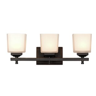 Waltham 3-Light Vanity Light by Darby Home Co