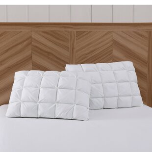 Luxe Down Chamber Pillow (Set of 2)