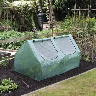 Taulbee 3 Ft W X 5.5 Ft D Mini Greenhouse By Sol 72 Outdoor