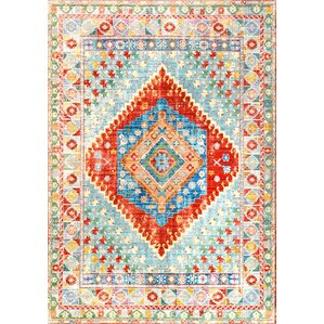 fontayne orange area rug