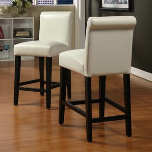 Tenafly 24 Bar Stool (Set of 2) Charlton Home
