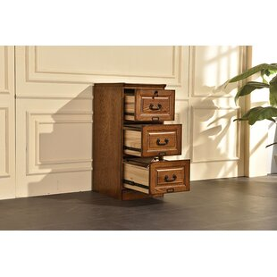 Darby Home Co Sarthak 3 Drawer Vertical Filing Cabinet