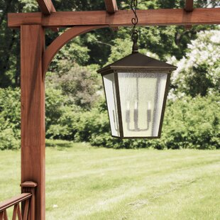 Fleur De Lis Living Alexis 3-Light Outdoor Hanging Lantern