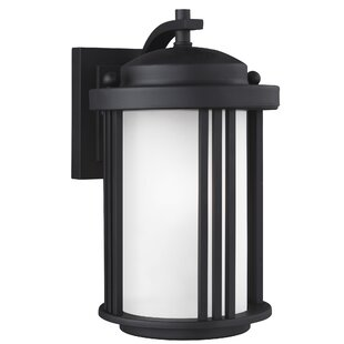 Dunkley 1-Light Outdoor Wall Lantern