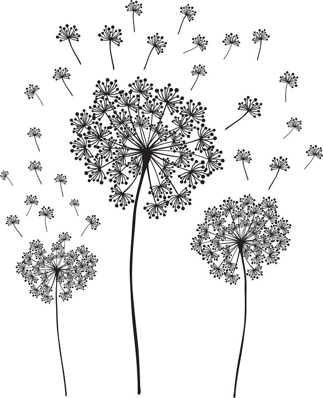 Wall Art Kit Dandelion Small Wall Decal Part 44
