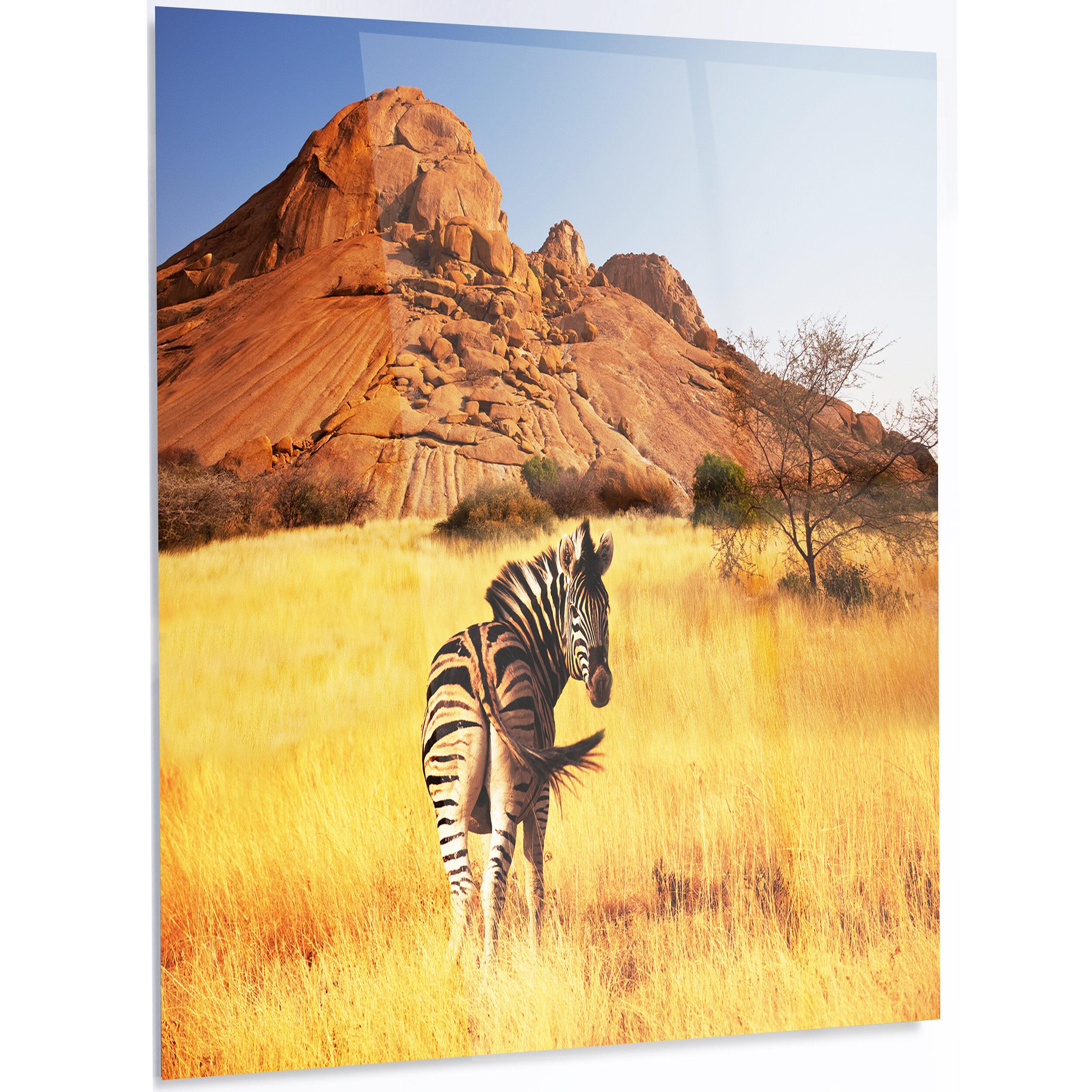 DesignArt \'Lonely Zebra in African Prairie\' Photographic Print on ...