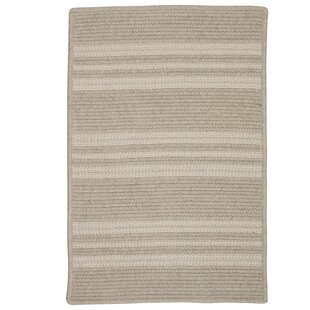 Neponset Hand-Woven Brown Indoor/Outdoor Area Rug