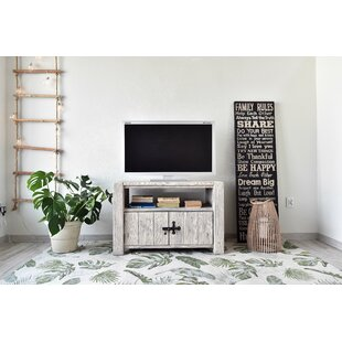 White Springs TV Stand For TVs Up To 42