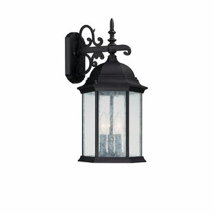 Darby Home Co Hearne 3-Light Outdoor Wall Lantern