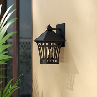 Brette 1-Light Outdoor Wall Lantern