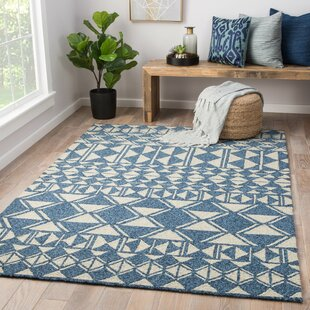 Salinas Hand-Hooked Ivory Indoor/Outdoor Area Rug