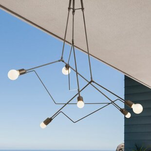 Divergence 6-Light Outdoor Pendant
