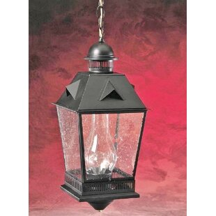 Coupon 900 Series1-Light Outdoor Hanging Lantern By Brass Traditions