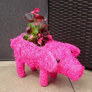 Pryor Natural Fibre Statue Planter By Happy Larry