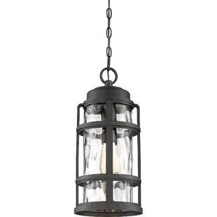 Breakwater Bay Devitt 1-Light Outdoor Hanging Lantern