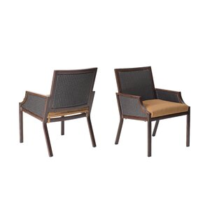 Hudson Patio Dining Chair with Cushion (Set of 2)