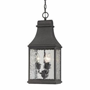 August Grove Negron 3-Light Outdoor Hanging Lantern