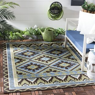 Rangely Brown/Green Indoor/Outdoor Area Rug