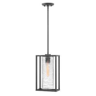 Hinkley Lighting Pax 1-Light Outdoor Pendant