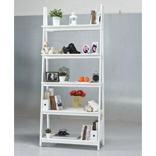 Latitude Run Eben Ladder Bookcase