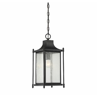 Winston Porter Vanhouten 1-Light Outdoor Hanging Lantern