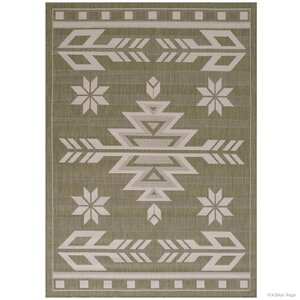 Ilana All Weather Indoor/Outdoor Sage Green Area Rug