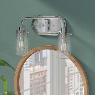 Mercury Row Carrigan 2-Light Vanity Light