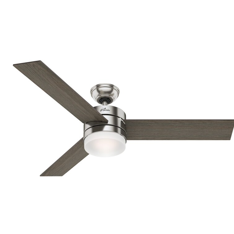 Hunter Fan 54 Exeter 3 Blade Standard Ceiling Fan With Remote Control And Light Kit Included Reviews Wayfair