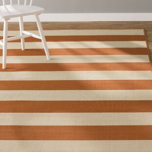 Alford Orange Indoor/Outdoor Area Rug