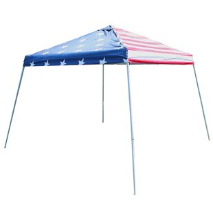 Slant Leg Instant 10 Ft. W x 10 Ft. D Metal Pop-Up Canopy by King Canopy