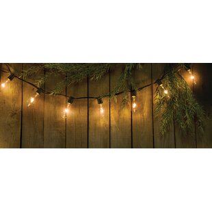 Letman Edison Bulb Strand 20 ft. 20-Light Globe String Lights
