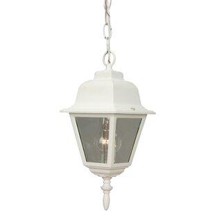 Charlton Home Oakhill 1-Light Four Sides Outdoor Hanging Lantern