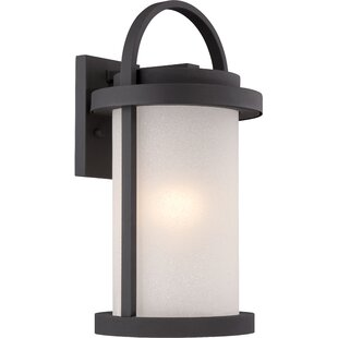 Darby Home Co Carrie 1-Light Outdoor Wall Lantern