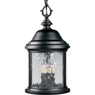 Alcott Hill Drumakeely 3-Light Outdoor Hanging Lantern