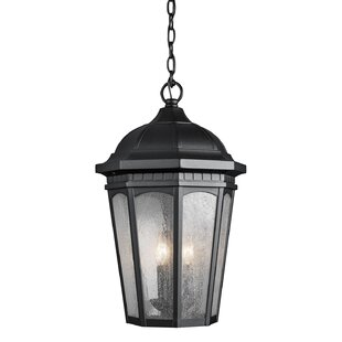 Darby Home Co Flinders 3-Light Outdoor Hanging Lantern