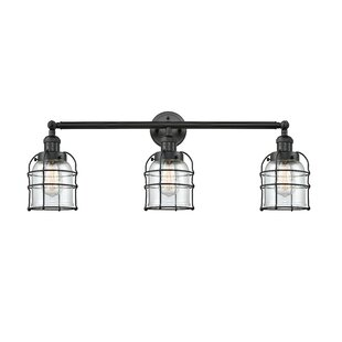 Williston Forge Anaya Bell Cage 3-Light Vanity Light