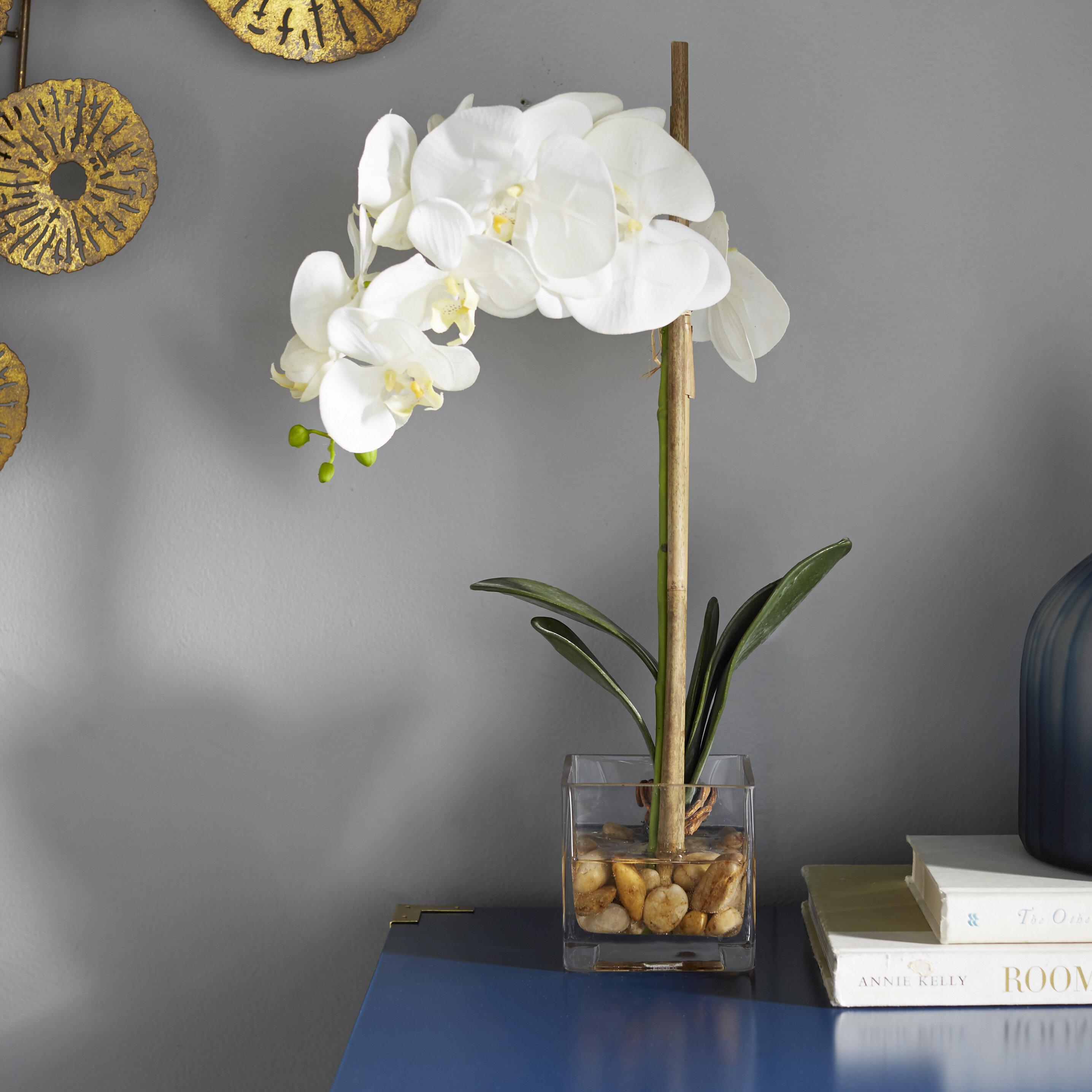 Primrue Faux Phalaenopsis Orchid Floral Arrangement In Acrylic Glass Vase Reviews Wayfair