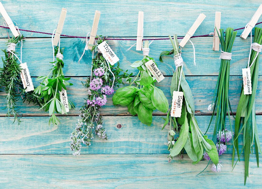 WallPops! Herbs Kitchen Wall Decal   Wayfair