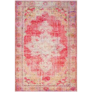 Ryhill Floral Bright Pink/Pale Pink Area Rug