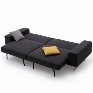 Demelo Sleeper Sofa by Brayden Studio