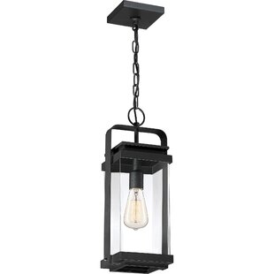Narragansett 1-Light Outdoor Hanging Lantern