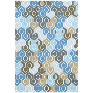 Broome Blue Indoor/Outdoor Area Rug