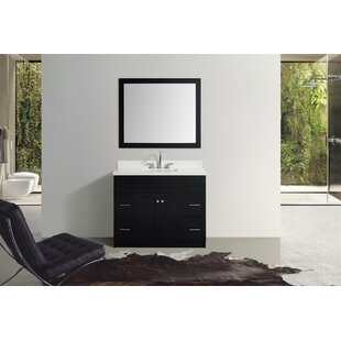 Inexpensive Truesdale 43 Single Bathroom Vanity With Mirror By Winston Porter