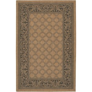 Celia Cocoa/Black Indoor/Outdoor Area Rug