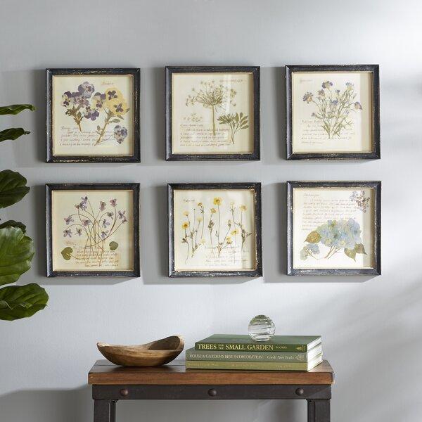 Framed Floral Prints Birch Lane